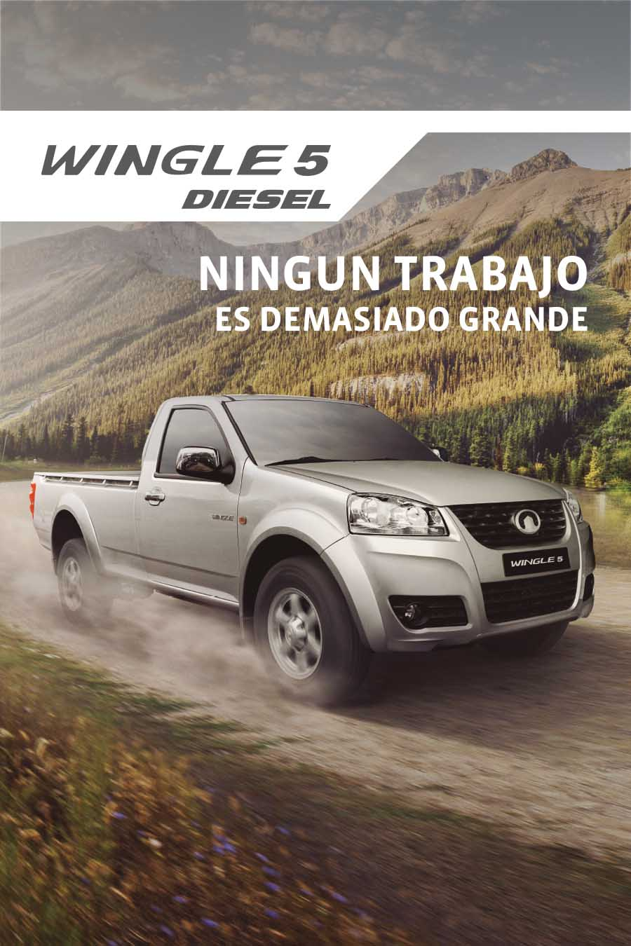 Wingle 5 Diesel Cabina Simple